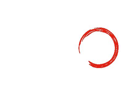 nzo logo